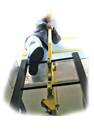 LadderUp Safety Grab Post, Galvanized Steel