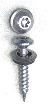 #9 X 2 SS Pan Head Evergrip Screw w/ NEO, Painted Top (250)
